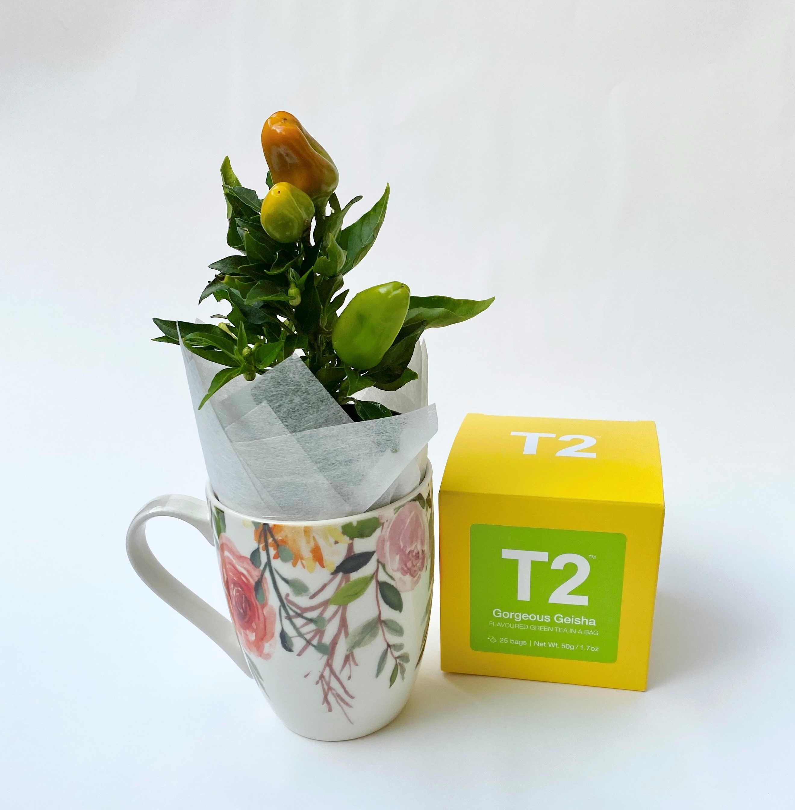 Chill - Chilli Plant, Coffee Mug and T2 Gift