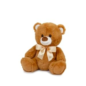 Teddy Brown Small