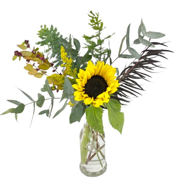 Sunflower gift pot in hessian bag - Same day Melbourne delivery